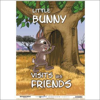 Little Bunny Visits His Friends