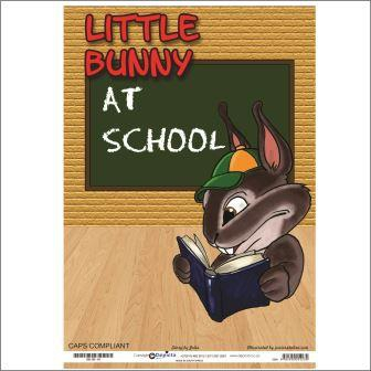 Little Bunny At School