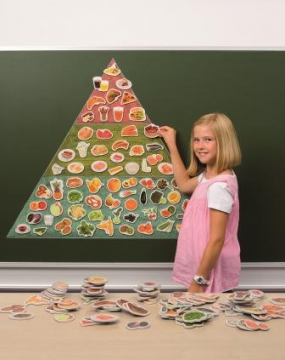 Magnetic Pictures to Create a Food Pyramid 91pc